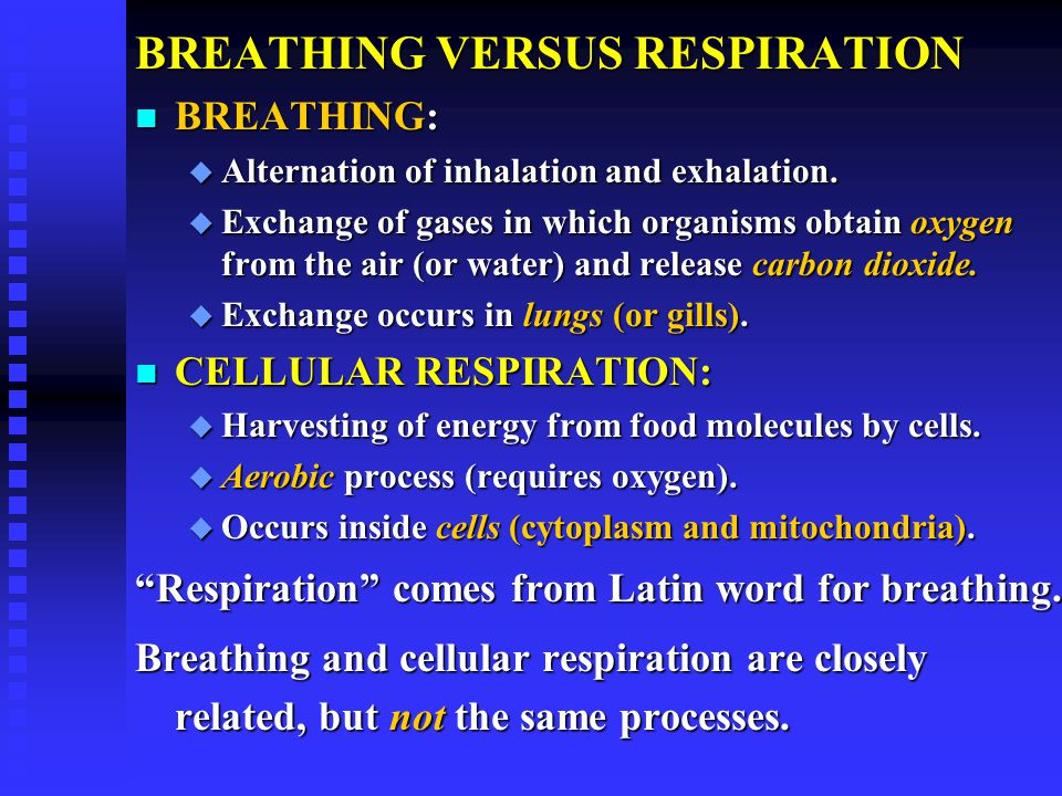 BREATHING VERSUS RESPIRATION