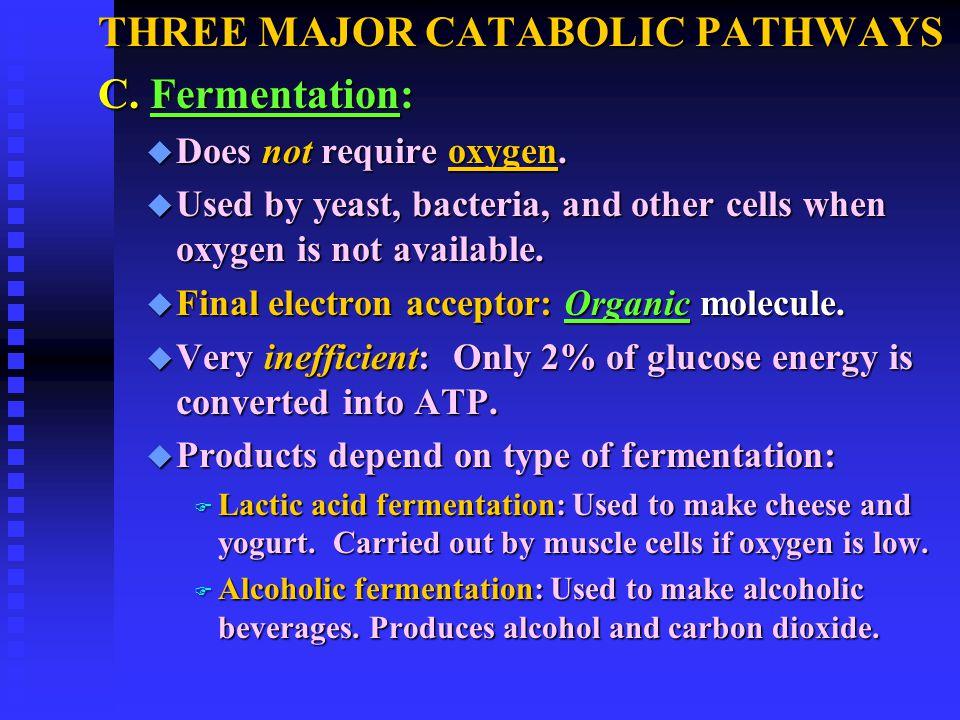 THREE MAJOR CATABOLIC PATHWAYS C. Fermentation: