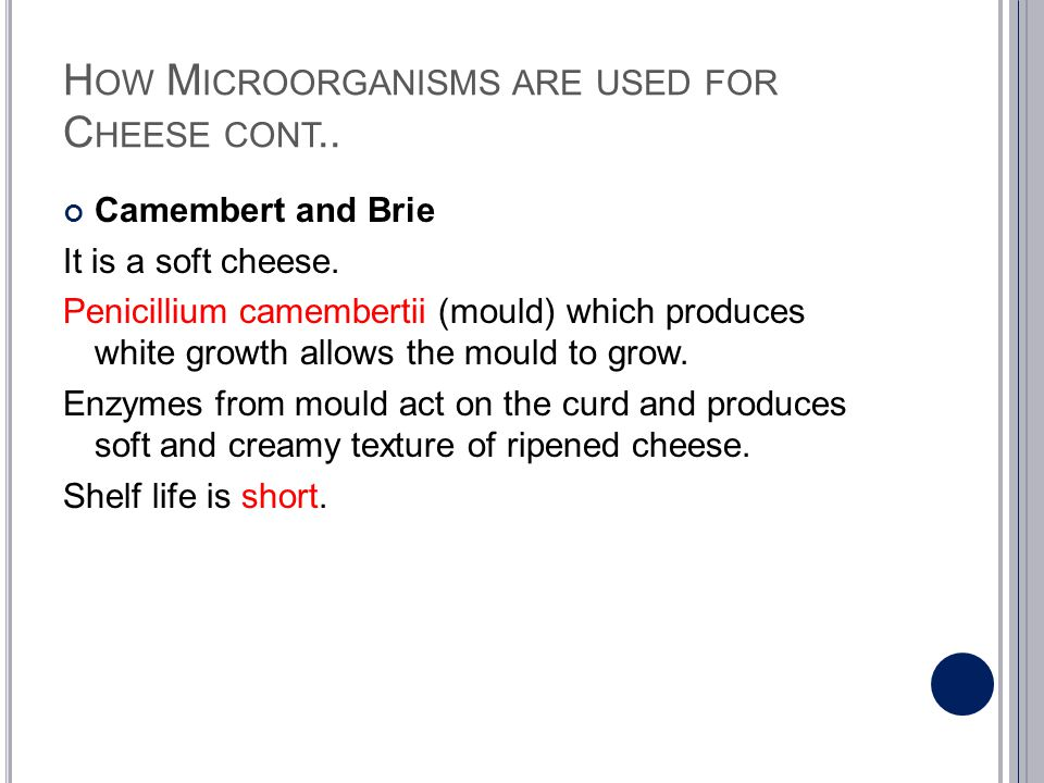 How Microorganisms are used for Cheese cont..