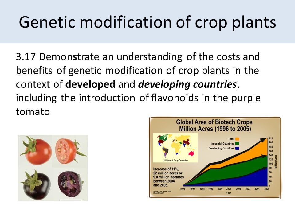 Genetic modification of crop plants