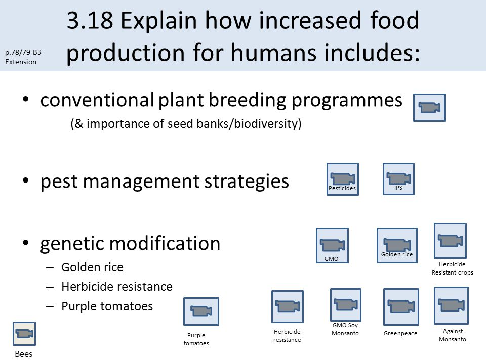 3.18 Explain how increased food production for humans includes: