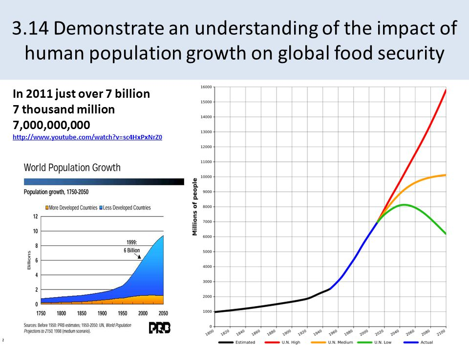 3.14 Demonstrate an understanding of the impact of human population growth on global food security