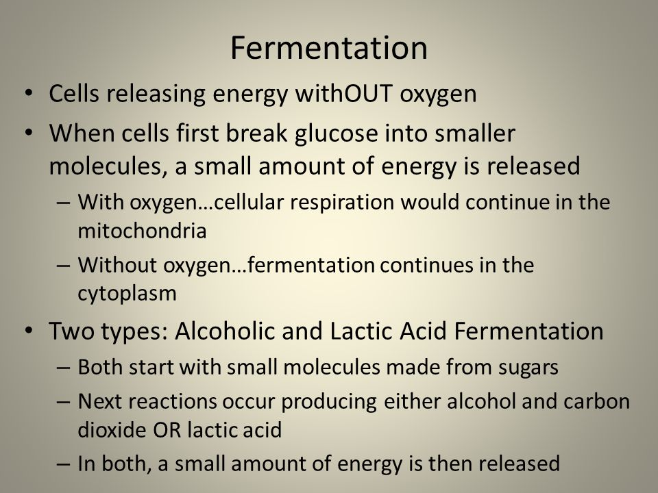 Fermentation Cells releasing energy withOUT oxygen