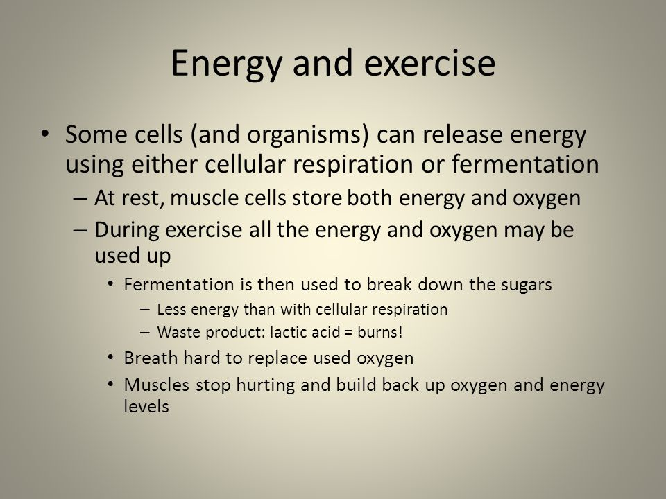 Energy and exercise Some cells (and organisms) can release energy using either cellular respiration or fermentation.
