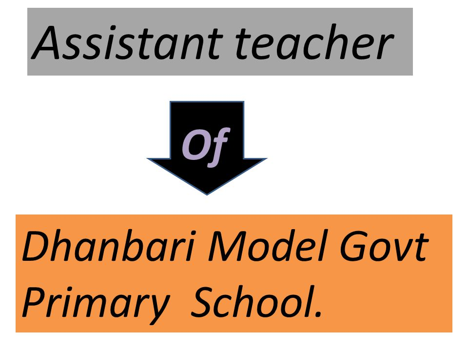 Assistant teacher Of Dhanbari Model Govt Primary School.