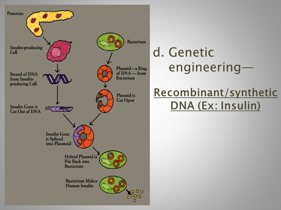 Recombinant/synthetic DNA (Ex: Insulin)