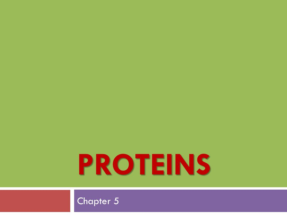 Proteins Chapter 5