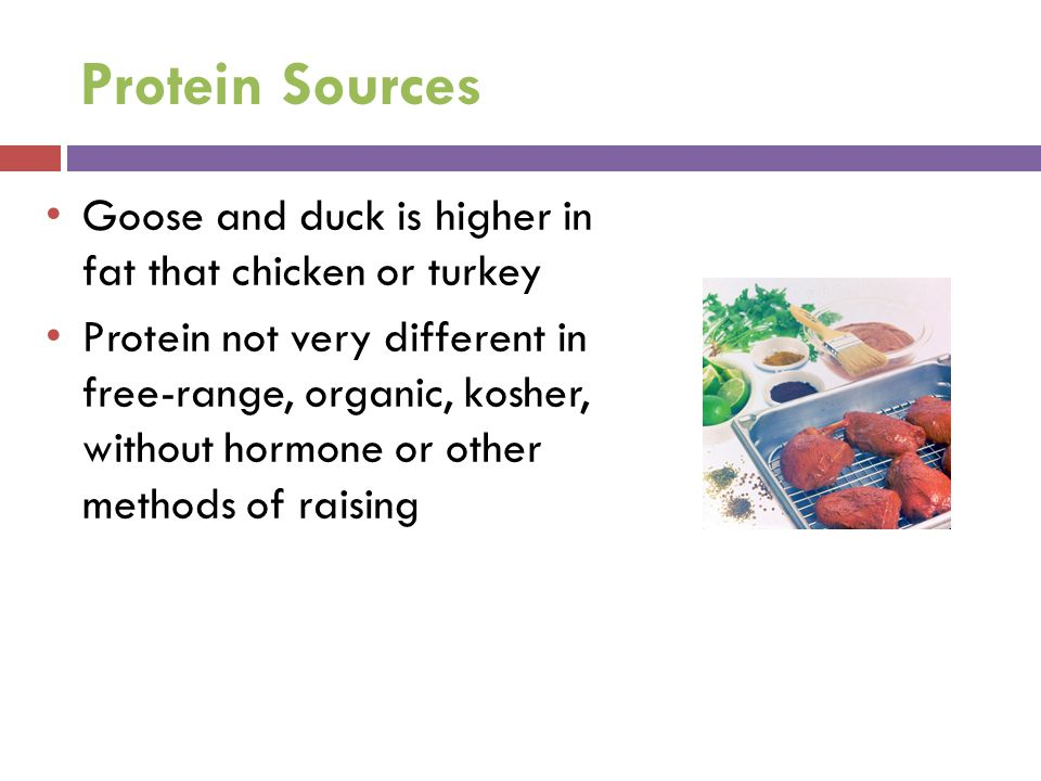 Protein Sources Goose and duck is higher in fat that chicken or turkey