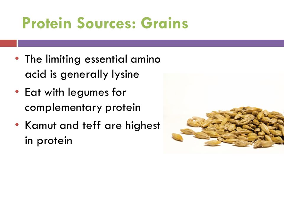 Protein Sources: Grains