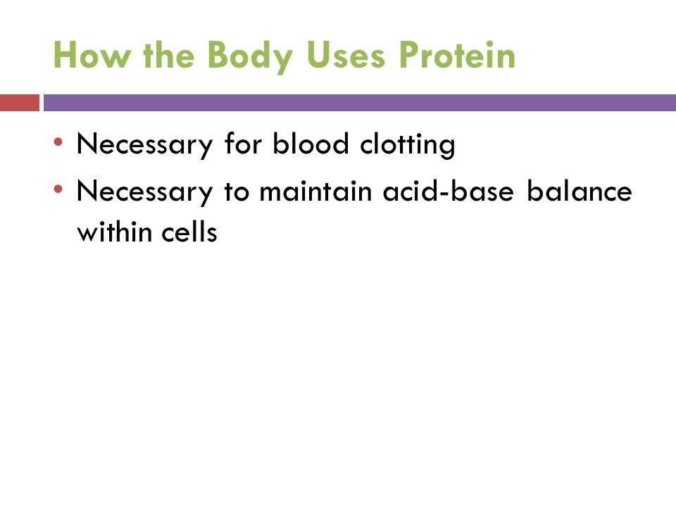 How the Body Uses Protein
