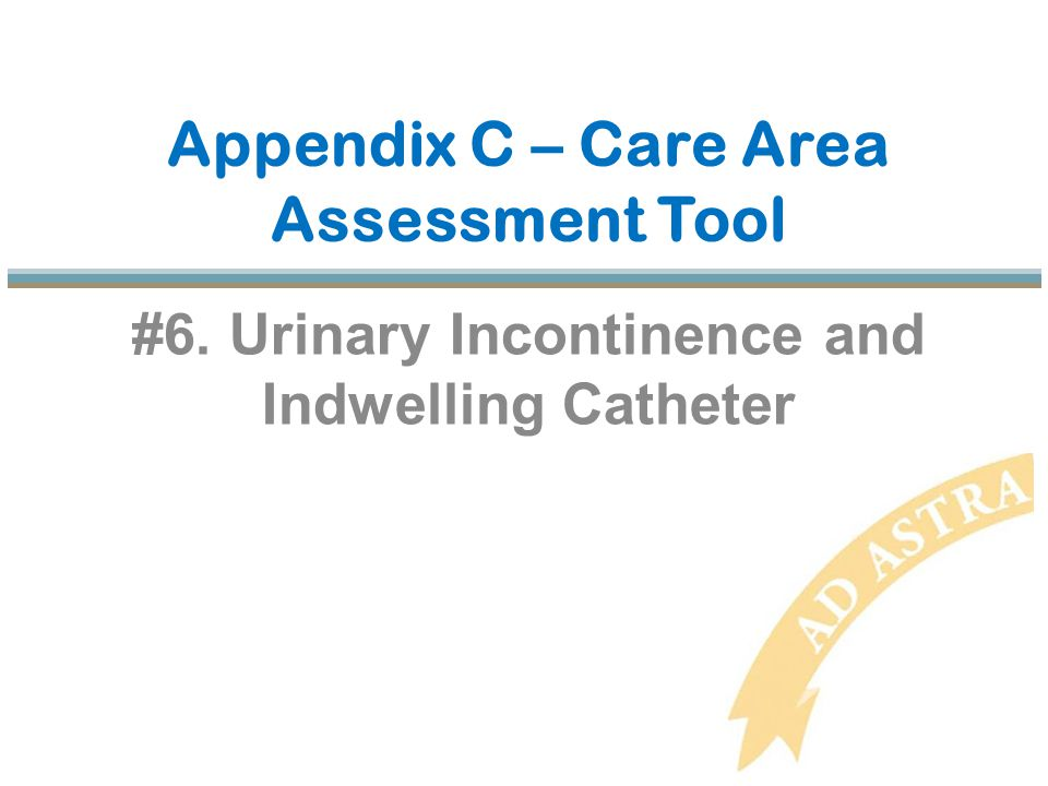 Appendix C – Care Area Assessment Tool