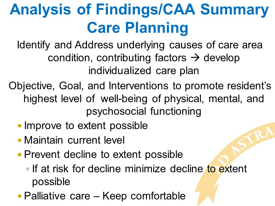 Analysis of Findings/CAA Summary Care Planning