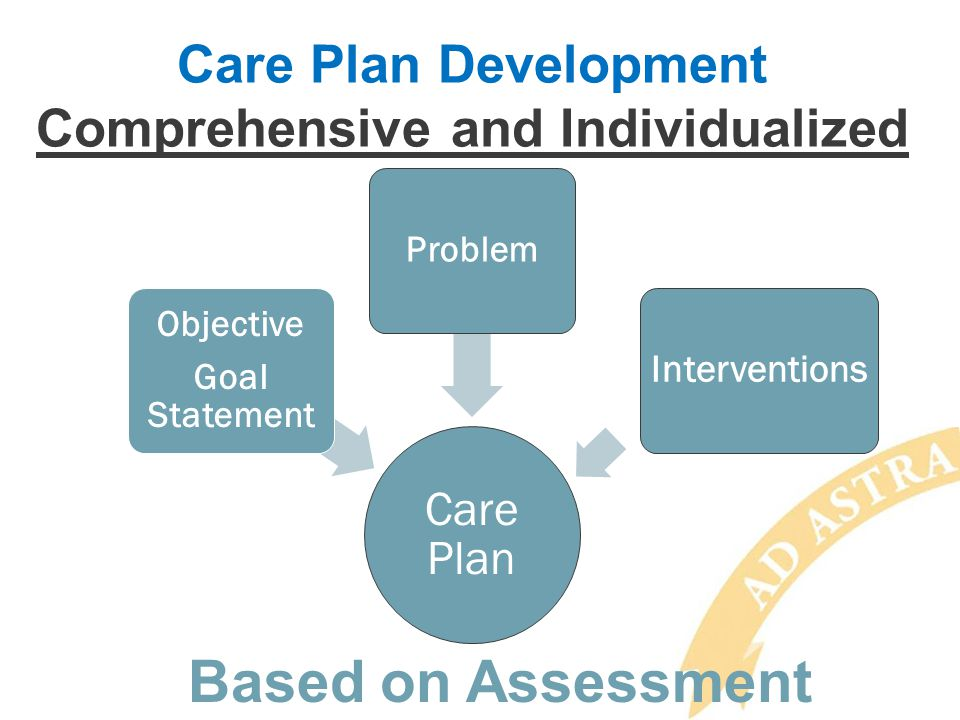 Care Plan Development Comprehensive and Individualized