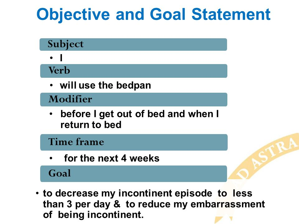 Objective and Goal Statement