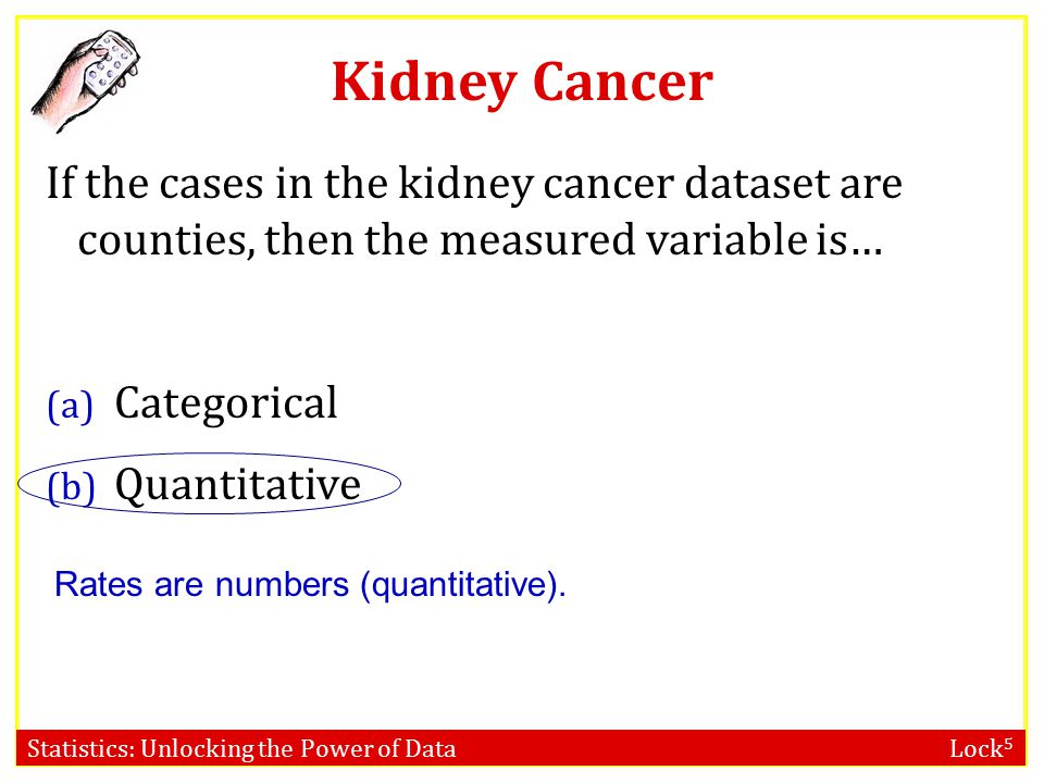 Kidney Cancer If the cases in the kidney cancer dataset are counties, then the measured variable is…