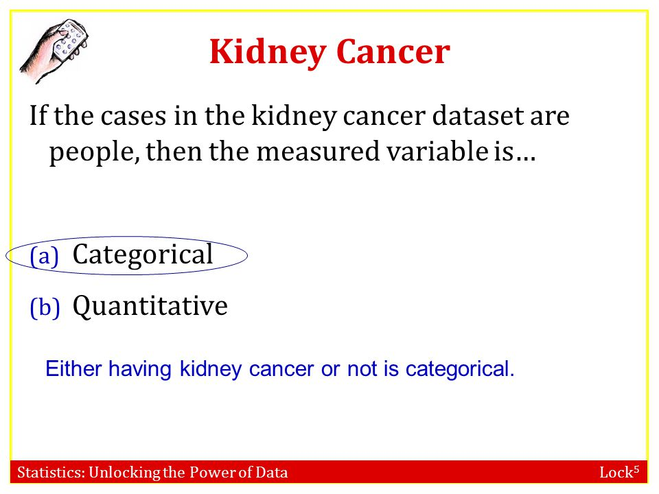 Kidney Cancer If the cases in the kidney cancer dataset are people, then the measured variable is…