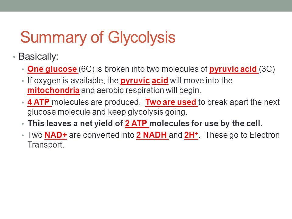 Summary of Glycolysis Basically: