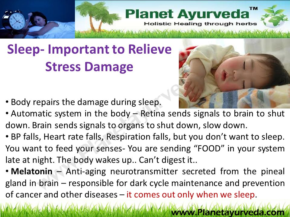 Sleep- Important to Relieve Stress Damage