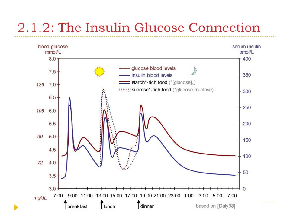 2.1.2: The Insulin Glucose Connection
