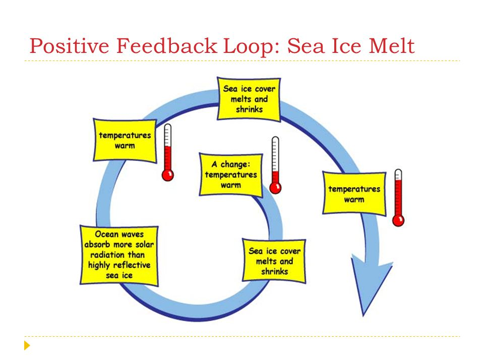 Positive Feedback Loop: Sea Ice Melt