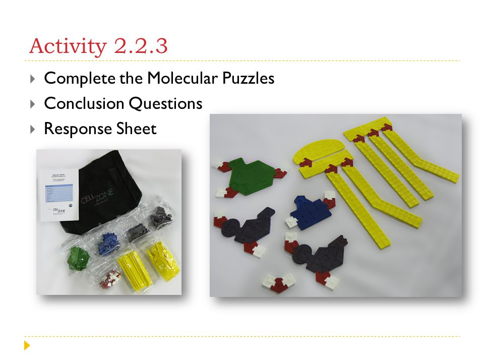 Activity 2.2.3 Complete the Molecular Puzzles Conclusion Questions