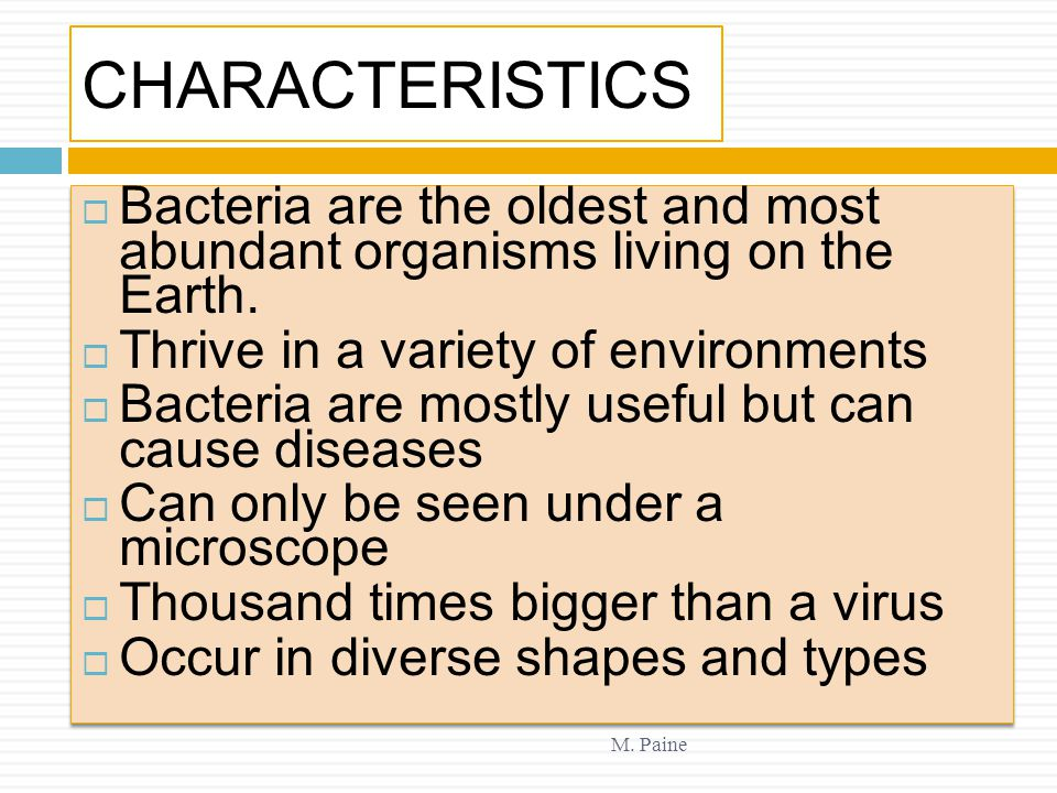 CHARACTERISTICS Bacteria are the oldest and most abundant organisms living on the Earth. Thrive in a variety of environments.