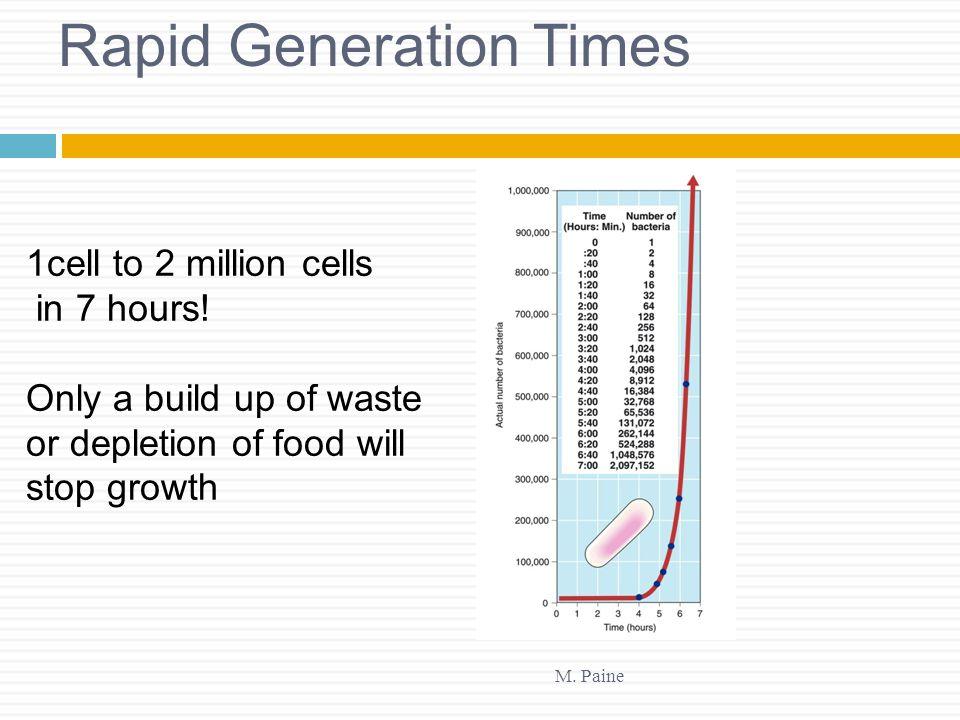 Rapid Generation Times