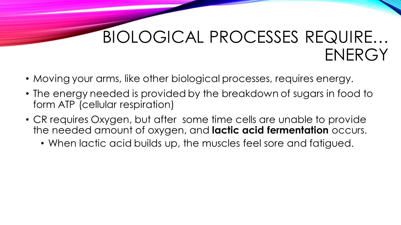 Biological Processes require… Energy