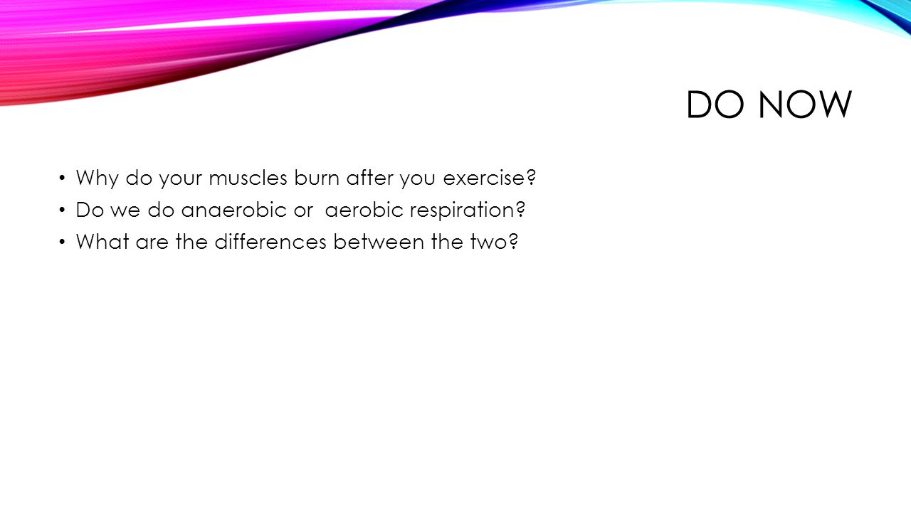 Do Now Why do your muscles burn after you exercise