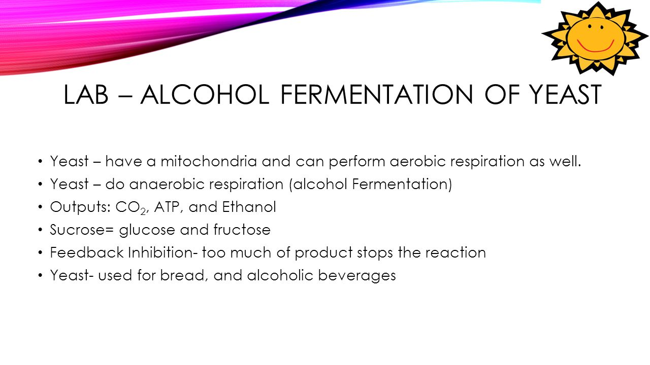 Glycolysis and fermentation in yeast lab report