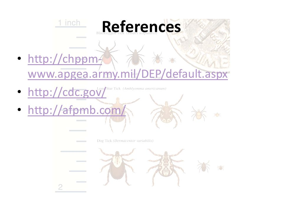 References http://chppm-www.apgea.army.mil/DEP/default.aspx