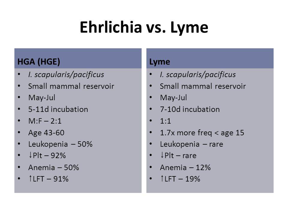 Ehrlichia vs. Lyme HGA (HGE) Lyme I. scapularis/pacificus