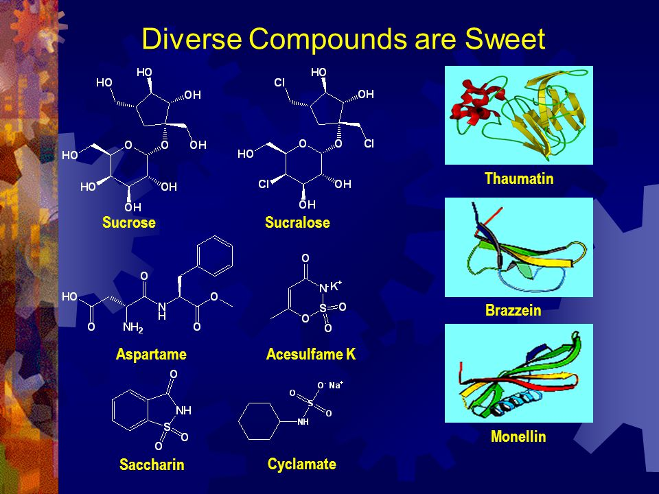 Diverse Compounds are Sweet