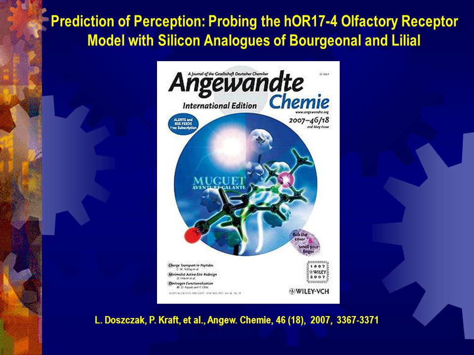 Prediction of Perception: Probing the hOR17-4 Olfactory Receptor
