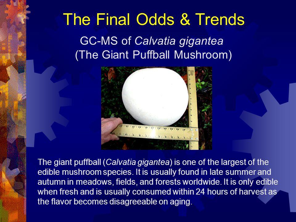 The Final Odds & Trends GC-MS of Calvatia gigantea