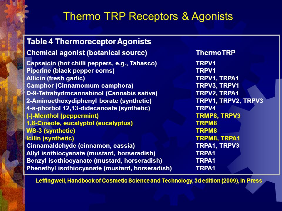 Thermo TRP Receptors & Agonists
