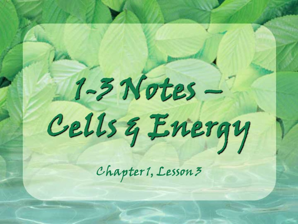 1-3 Notes – Cells & Energy Chapter 1, Lesson 3
