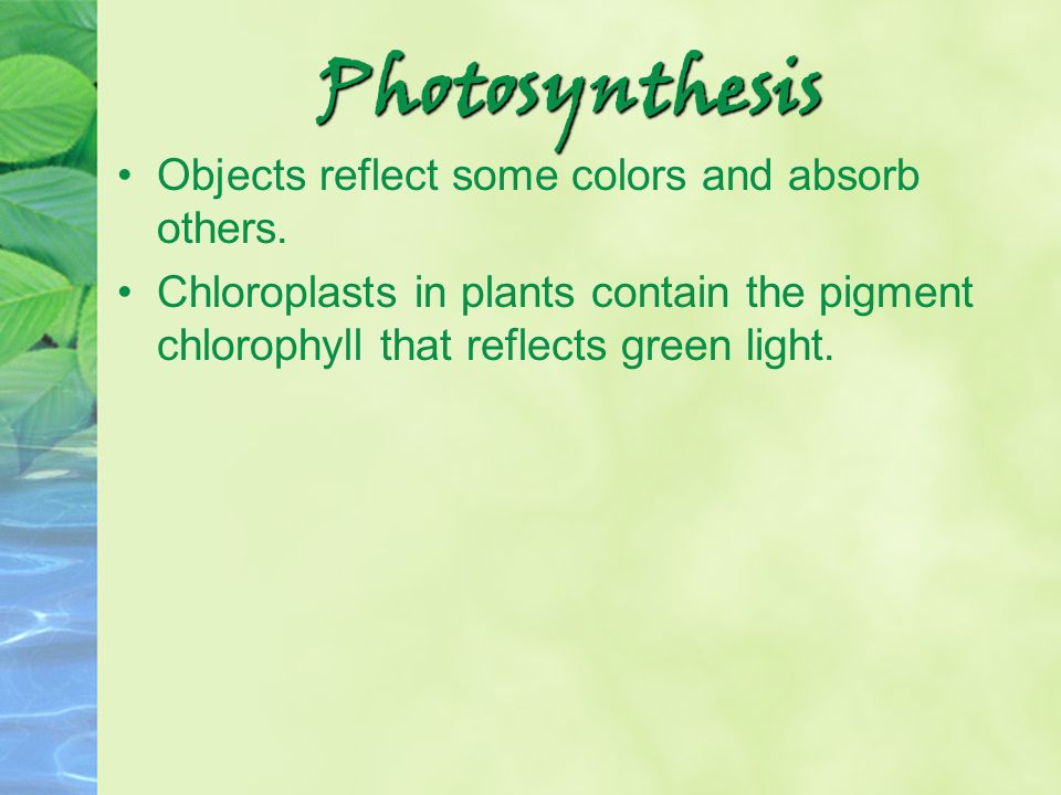 Photosynthesis Objects reflect some colors and absorb others.
