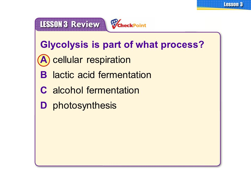 Glycolysis is part of what process A cellular respiration