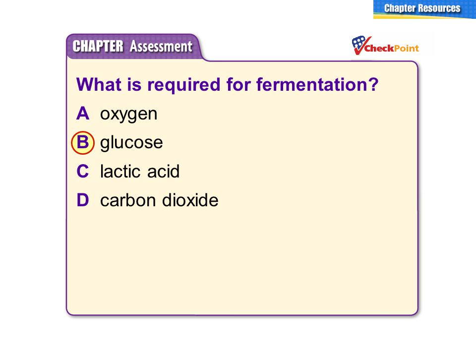 What is required for fermentation