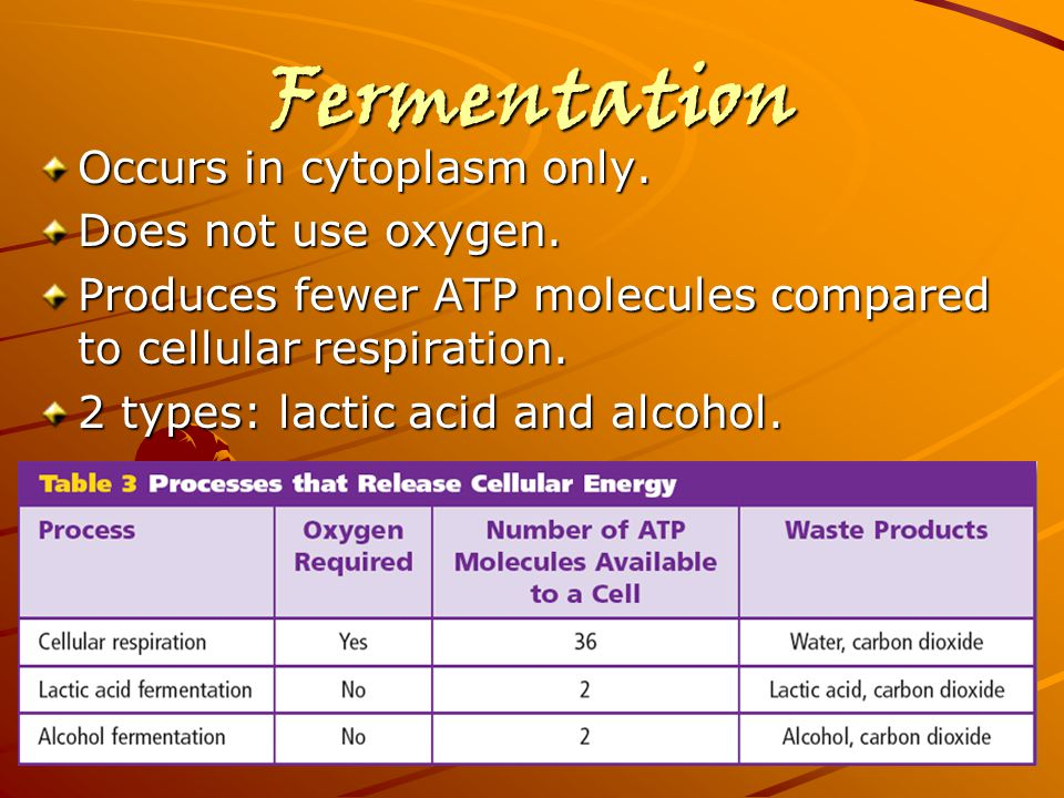 Fermentation Occurs in cytoplasm only. Does not use oxygen.