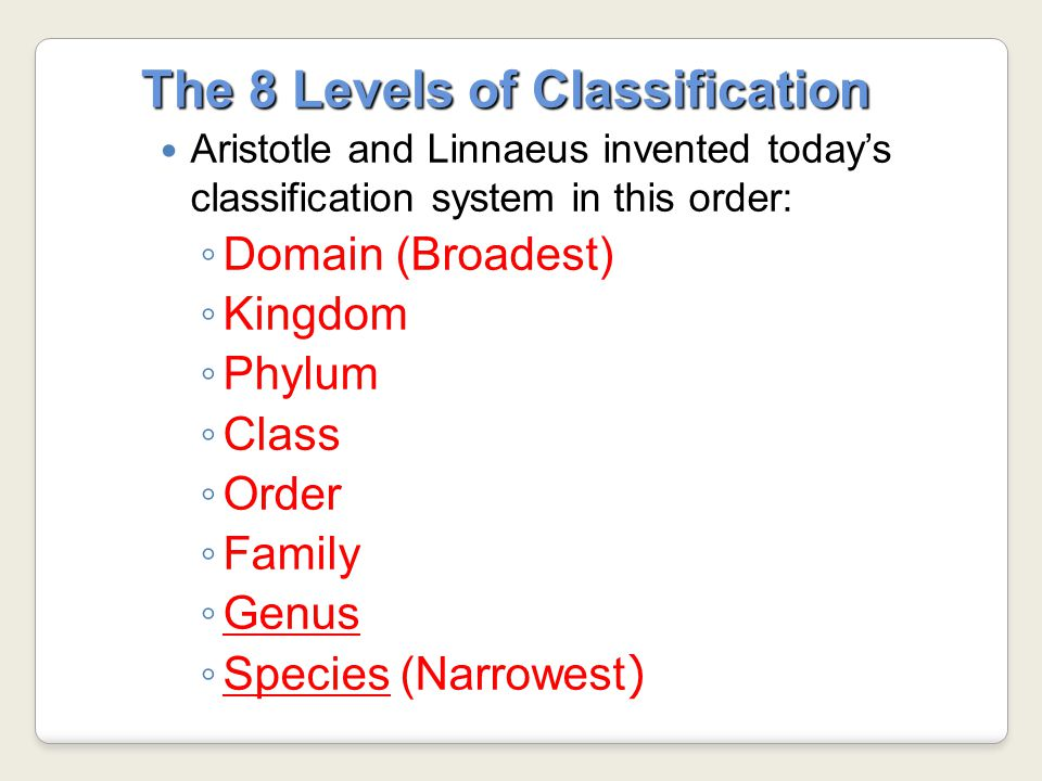 The 8 Levels of Classification