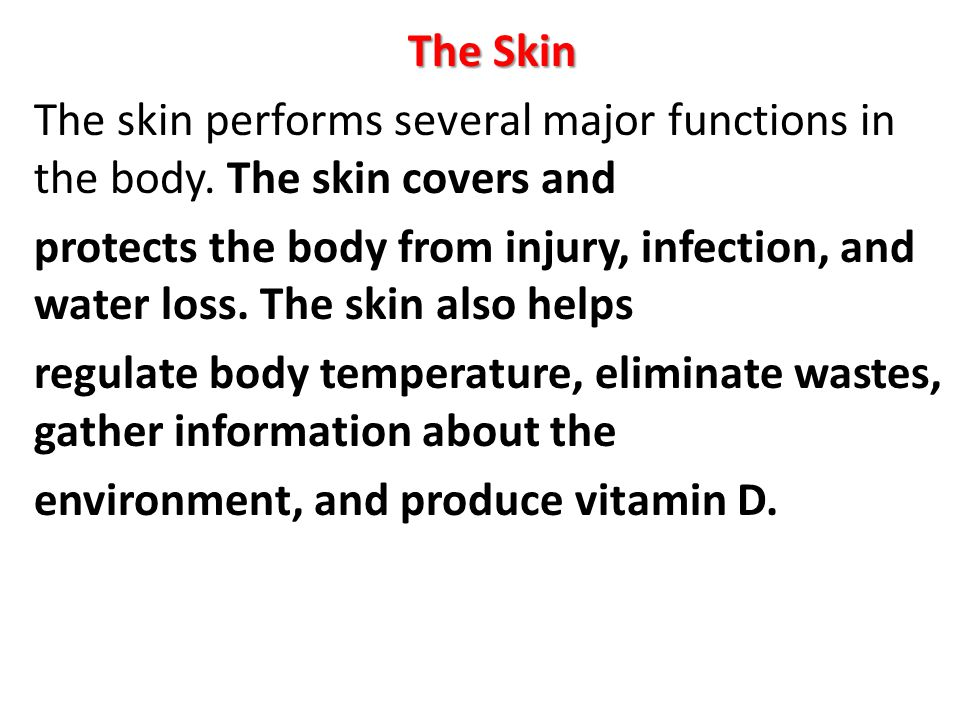 The Skin The skin performs several major functions in the body