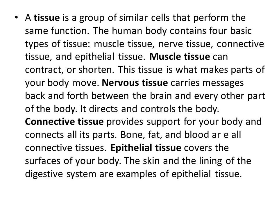 A tissue is a group of similar cells that perform the same function