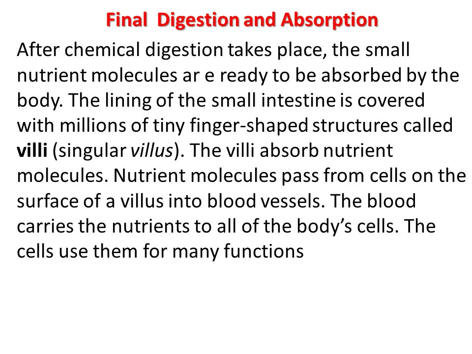 Final Digestion and Absorption After chemical digestion takes place, the small nutrient molecules ar e ready to be absorbed by the body.