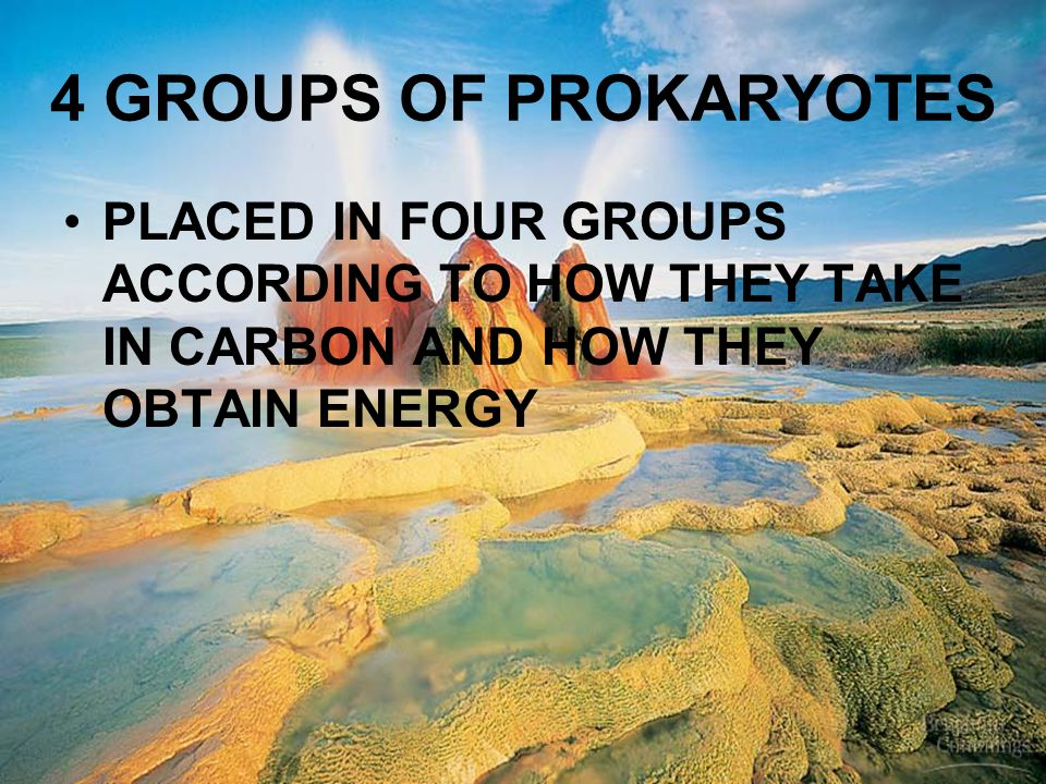 4 GROUPS OF PROKARYOTES PLACED IN FOUR GROUPS ACCORDING TO HOW THEY TAKE IN CARBON AND HOW THEY OBTAIN ENERGY.