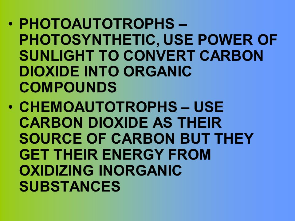 PHOTOAUTOTROPHS – PHOTOSYNTHETIC, USE POWER OF SUNLIGHT TO CONVERT CARBON DIOXIDE INTO ORGANIC COMPOUNDS