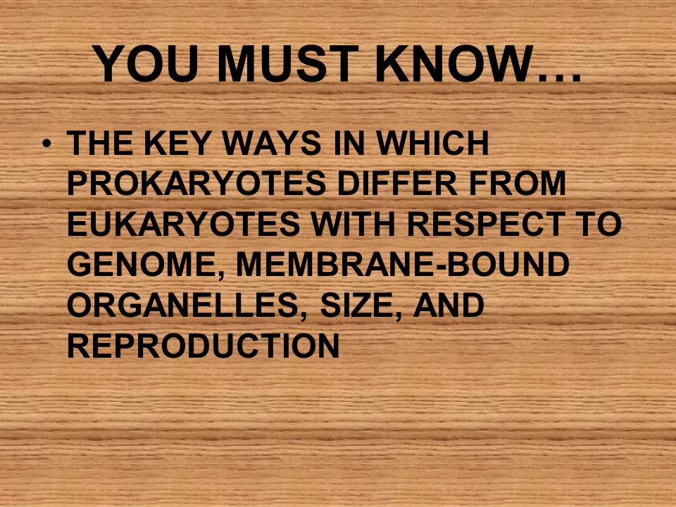 YOU MUST KNOW… THE KEY WAYS IN WHICH PROKARYOTES DIFFER FROM EUKARYOTES WITH RESPECT TO GENOME, MEMBRANE-BOUND ORGANELLES, SIZE, AND REPRODUCTION.