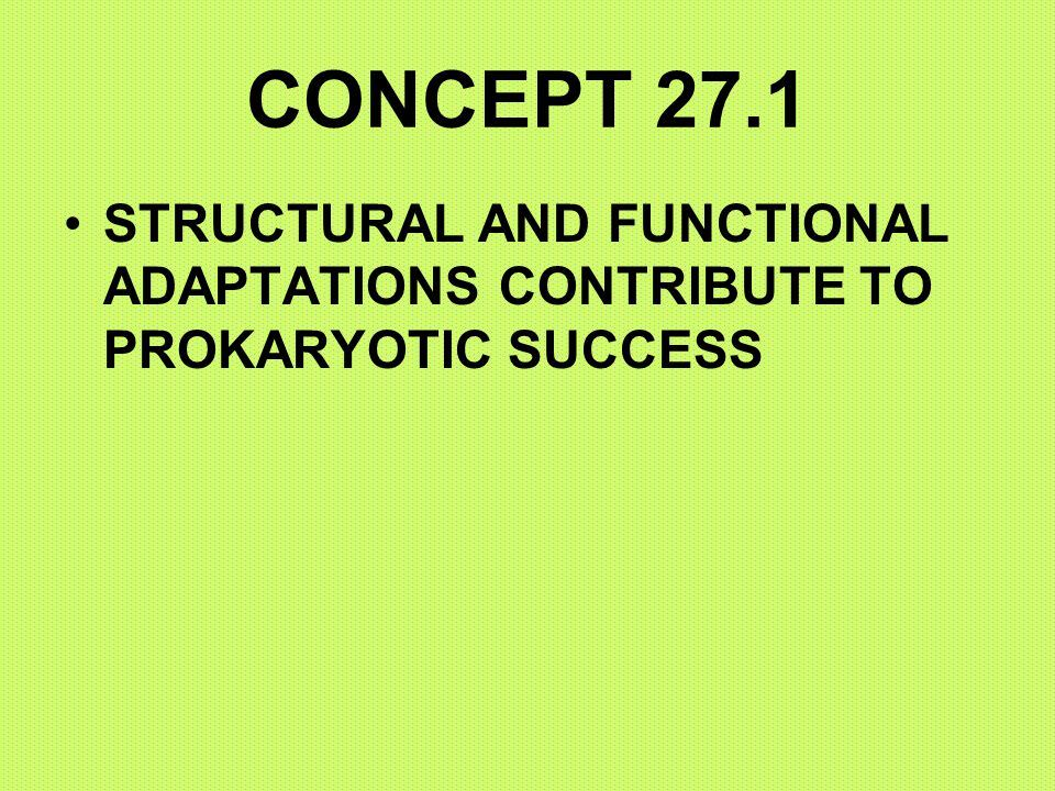 CONCEPT 27.1 STRUCTURAL AND FUNCTIONAL ADAPTATIONS CONTRIBUTE TO PROKARYOTIC SUCCESS