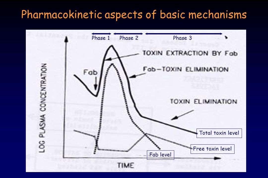 Pharmacokinetic aspects of basic mechanisms